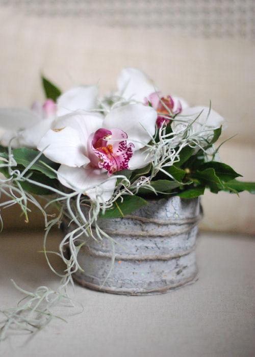 bomboniera-mini-orchidea-terni