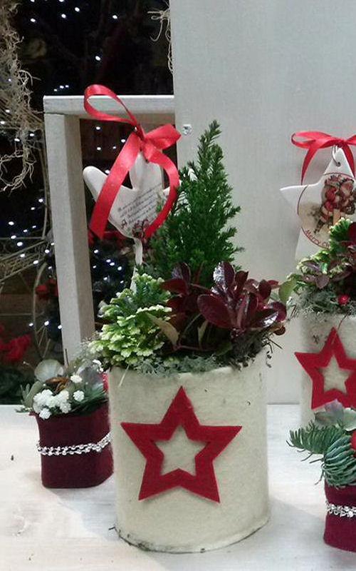 composizione-natalizia-terni