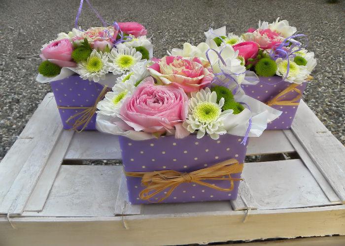 fiori-nascita-terni