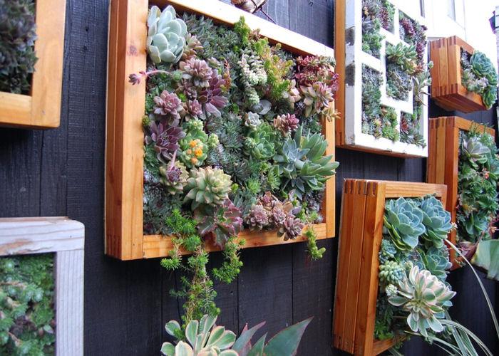 giardino-verticale-composizioni-terni
