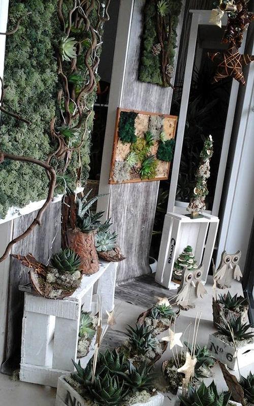 pareti-giardino-verticale-terni