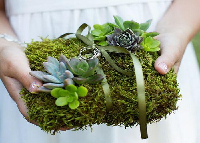 portafedi-succulente-sposi